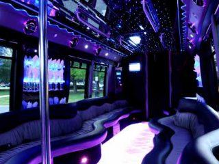 22 people party bus Memphis